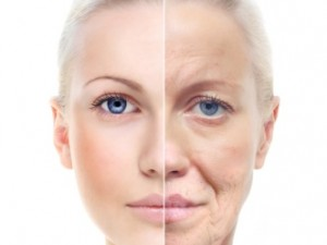envejecimiento cutáneo