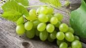 remedios con uvas