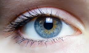 dieta_ojos