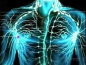 remedios para limpiar el sistema linfático