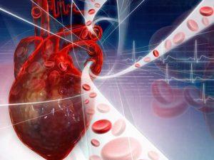 remedios para el colesterol bueno