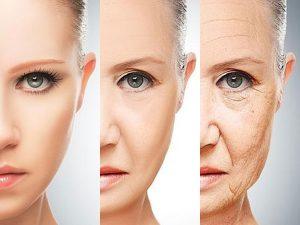 selenio envejecimiento celular