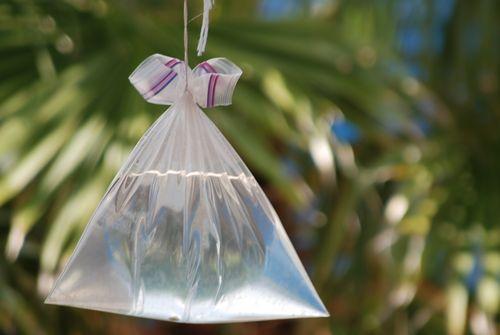 Remedios para ahuyentar moscas - Como espantar moscas ...