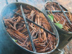 propieddes ayahuasca