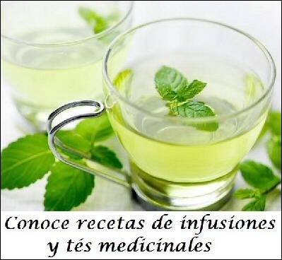 infusiones medicinales