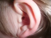 remedios infección de oídos