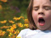 remedios rinitis alergica en niños