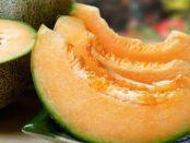 remedios con melón