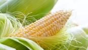 remedios caseros con maiz