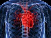 remedios para un corazón sano