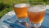 remedios con té de kombucha