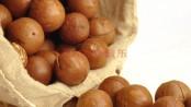 remedios con macadamia