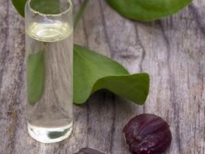 remedios con aceite de jojoba