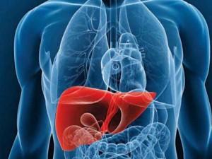 remedios hígado