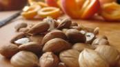 semillas de albaricoque