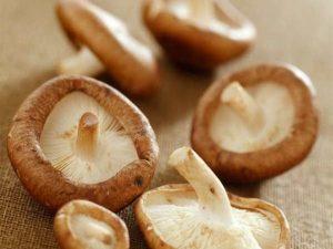 remedios con shiitake