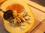 remedios con semillas de calabaza