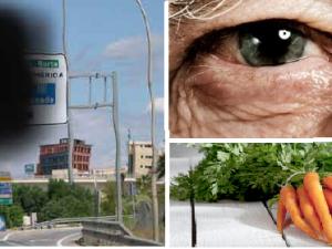 dieta degeneracion macular