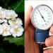 Contraindicaciones del espino albar y sus efectos secundarios