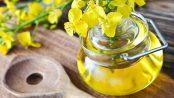 aceite de canola bueno o malo