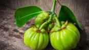 Beneficios y contraindicaciones Garcinia Cambogia