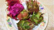 pitahaya y alcachofa contraindicaciones