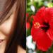 Mascarillas de flor de Jamaica o hibisco para el cabello