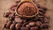cacao beneficios y contraindicaciones