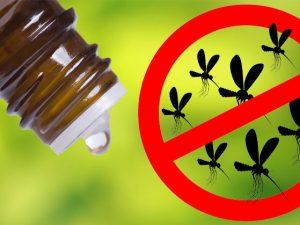 aceites esencial para repeler mosquito