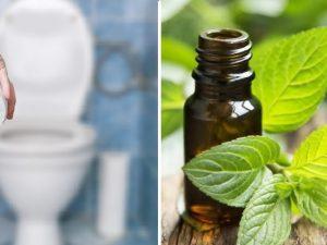 aceites esenciales para el estreñimiento