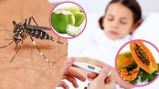 alimentación para un enfermo de dengue
