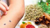 dieta para el paludismo