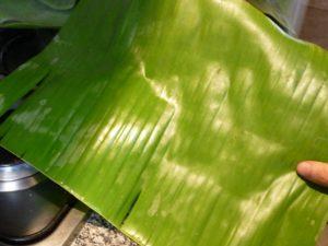 hojas de platano