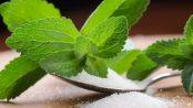 Stevia: Beneficios y desventajas