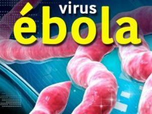 remedios para el ebola