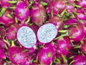 pitaya beneficios y contraindicaciones