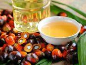 aceite de palma beneficios y contraindicaciones
