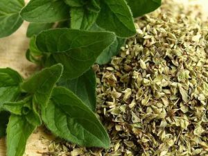 té de orégano para la tos