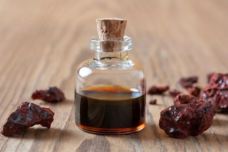 Aceite esencial de sangre de drago o dragón: Beneficios y