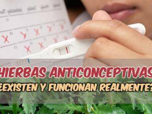 Anticonceptivos naturales caseros